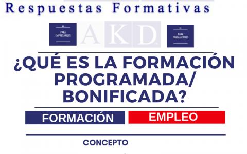 ¿Qué es la Formación Programada para empresas?
