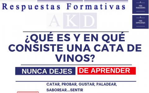 ¿Qué es una cata de vinos?