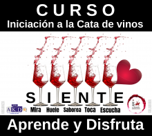 Curso iniciación a la cata de vinos en colaboración con DO Mancha